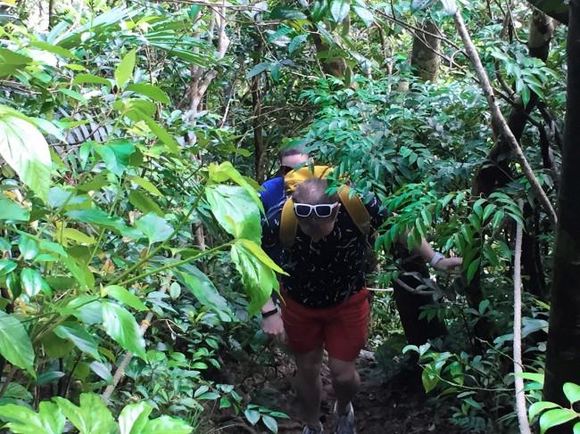 ②原生林の広がる亜熱帯のジャングルをプチハイキング