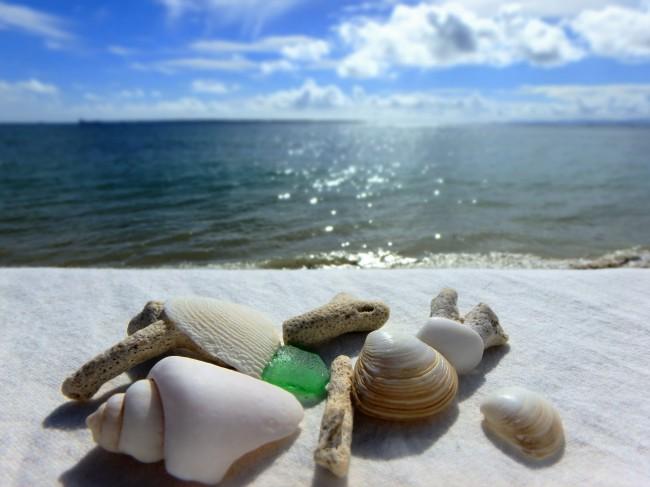 ⑨途中ビーチにおりられるところがたくさん。貝やサンゴを拾って旅の思い出に..